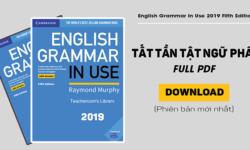 Tải sách English grammar in Use for Intermediate miễn phí
