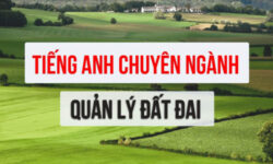 Từ vựng tiếng Anh chuyên ngành Quản lý đất đai, quy hoạch, địa chính
