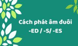 Cách phát âm đuôi ed, e, es