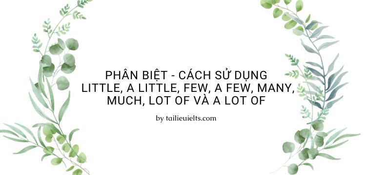Phân biệt - cách sử dụng Little, A Little, Few, A Few, Many, Much, Lot of và A Lot of
