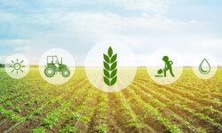 Từ vựng tiếng Anh chuyên ngành Nông nghiệp
