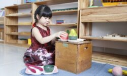 Top các trường có ngành giáo dục mầm non uy tín, chất lượng
