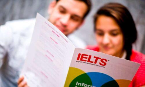Người mới bắt đầu nên học IELTS như thế nào cho đúng?