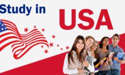 Các ngành học phổ biến ở Mỹ